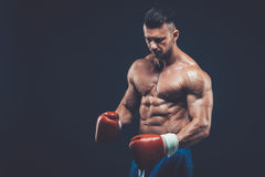 Muscular boxer in studio shooting, on black background. Muscular boxer in studio shooting, on black background fighter  kickbox boxer boxing fight Stock Photography