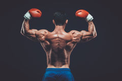 Muscular boxer in studio shooting, on black background. Royalty Free Stock Photos