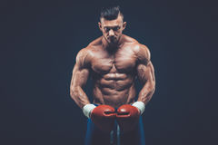 Muscular boxer in studio shooting, on black background. Muscular boxer in studio shooting, on black background fighter  kickbox boxer boxing fight Royalty Free Stock Image