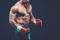 Muscular boxer in studio shooting, on black background. Muscular boxer in studio shooting, on black background fighter  kickbox boxer boxing fight Stock Photo