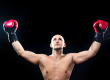 Muscular boxer in victory gesture. Isolated on black Stock Images