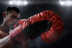 Muscular boxer wear red boxing glove stock photo