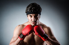 Muscular boxer wiith Stock Photography