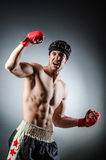 Muscular boxer wiith Royalty Free Stock Photos