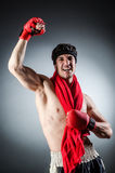 Muscular boxer wiith Royalty Free Stock Images