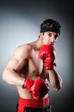 Muscular boxer Stock Photo
