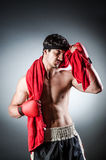 Muscular boxer Royalty Free Stock Photography
