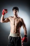 Muscular boxer Royalty Free Stock Photos