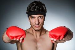 Muscular boxer Stock Image