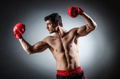 Muscular boxer Royalty Free Stock Image