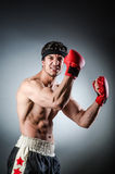 Muscular boxer Stock Photography