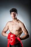 Muscular boxer Stock Photos