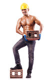Muscular builder Stock Photos