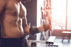 Muscular builder asian man training his body with lifting dumbbell on right hand. royalty free stock photo