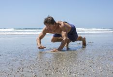 Man doing beach bear crawl workout Royalty Free Stock Photo