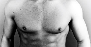 Muscular chest Stock Images
