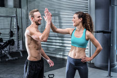 A muscular couple clapping hands Royalty Free Stock Photography