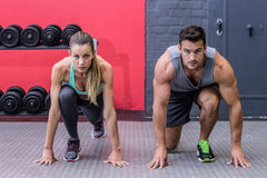 Muscular couple on the starting position Stock Image
