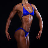 Muscular female Royalty Free Stock Photography