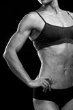 Muscular female body Stock Images