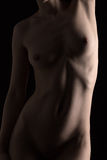 Muscular female body Royalty Free Stock Images