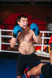 Muscular fighter with an angry face on a ring. stock images