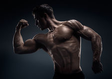 Muscular and fit young bodybuilder fitness male model posing. Muscular and fit young bodybuilder fitness male model posing over black background. Black and Royalty Free Stock Image