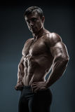 Muscular and fit young bodybuilder fitness male model posing. Royalty Free Stock Images
