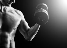 Muscular fitness man - bodybuilder with dumbbell Royalty Free Stock Photos