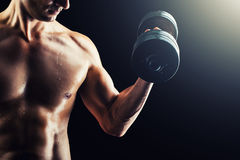 Muscular fitness man - bodybuilder with dumbbell Stock Image