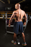 Muscular Fitness Man Royalty Free Stock Photos