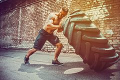 Muscular fitness shirtless man moving large tire in gym center, concept lifting, workout cross fit training. Muscular bearded tattooed fitness shirtless man royalty free stock photos