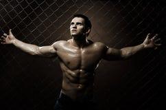 Muscular  guy Royalty Free Stock Photos