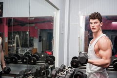 Muscular guy in the gym Royalty Free Stock Images