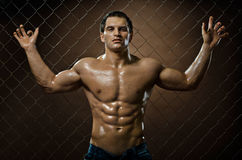 Muscular  guy Stock Photo
