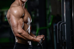 Muscular handsome athletic bodybuilder fitness model posing after exercises in gym on diet . stock photo