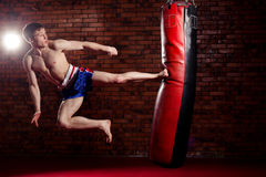 Muscular handsome fighter giving a forceful Royalty Free Stock Images