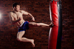 Muscular handsome fighter giving a forceful Royalty Free Stock Photos