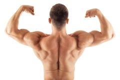 Muscular handsome man posing royalty free stock photos
