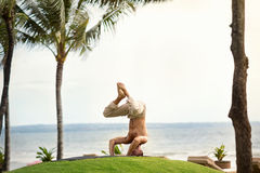 Muscular healthy man doing yoga in tropical nature Royalty Free Stock Image