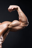 Muscular human male arm from front view Royalty Free Stock Images