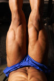 Muscular Legs on Leg press. Tan male on leg press machine blue shorts Royalty Free Stock Image