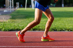 Muscular legs of men in shorts and sports shoes royalty free stock photos
