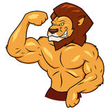 Muscular lion is posing. Illustration of the muscular lion posing vector illustration