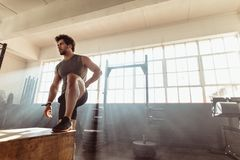 Muscular male athlete working out at gym stock images