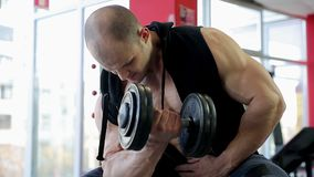 Muscular male athlete training hard in the gym, pumping iron to build muscles. Stock footage stock footage