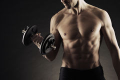 Exercising biceps with dumbbells Stock Photo