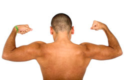 Muscular male from the back Royalty Free Stock Photos