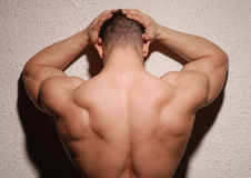 Muscular male back Royalty Free Stock Photography