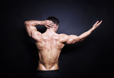 Muscular male back Royalty Free Stock Images